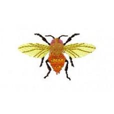 BeetlesnBugs 18