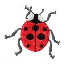BeetlesnBugs 5