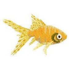 Goldfish g